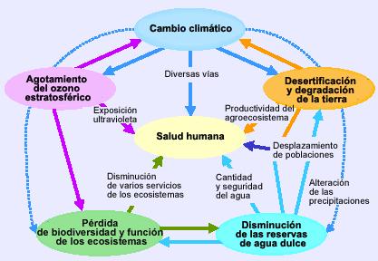 El cambio climático y la salud (Fuente: OMS)