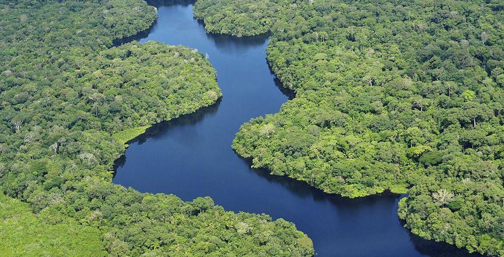 Externa Amazonas va