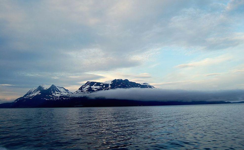 externa oceano artico