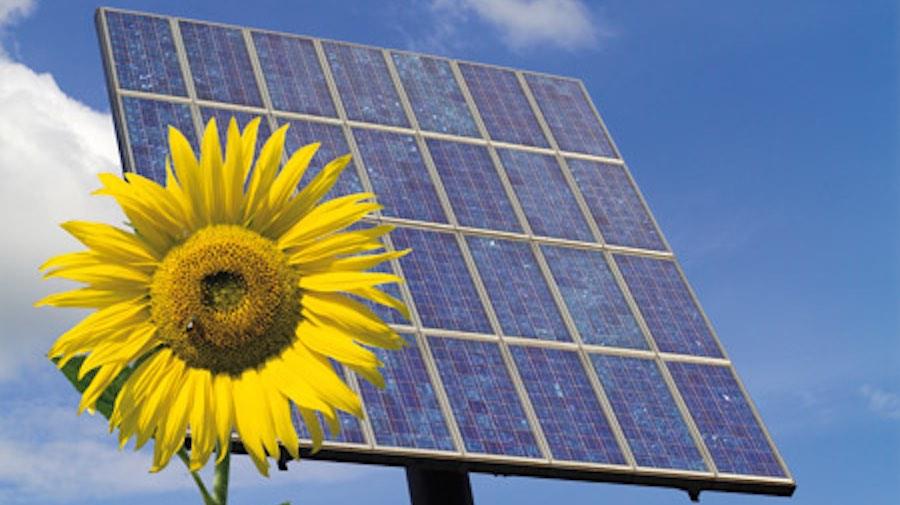 externa renovables dolares