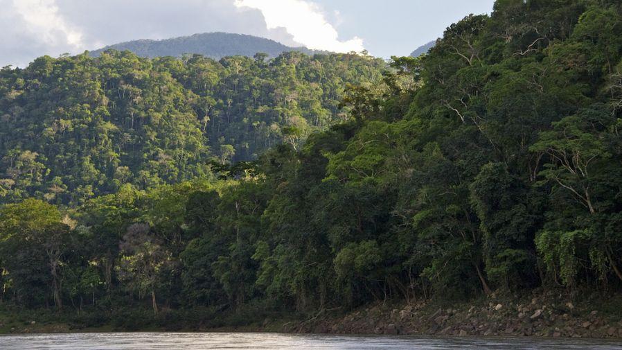 (Foto: Ministerio del Ambiente)